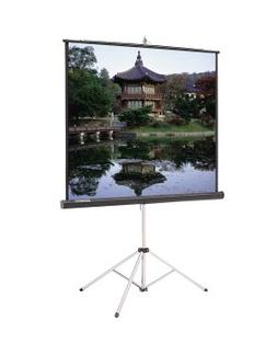 Da-Lite Carpeted Picture King Matte White Portable Projectio
